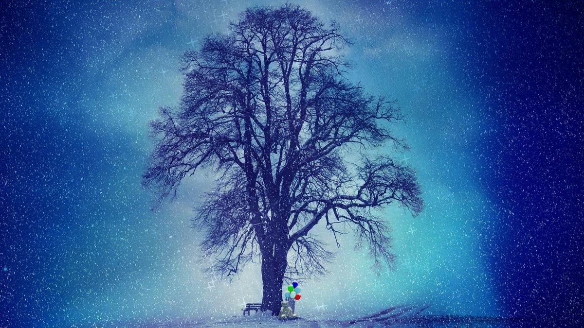 winter-2910818_1280