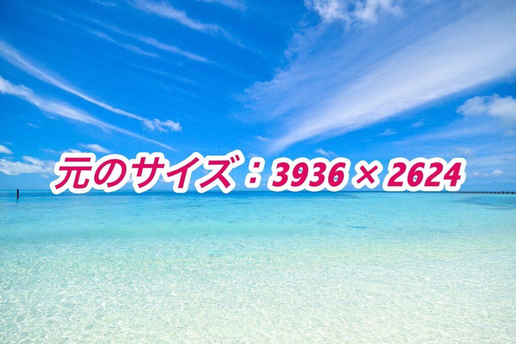 元のサイズ:3936 × 2624