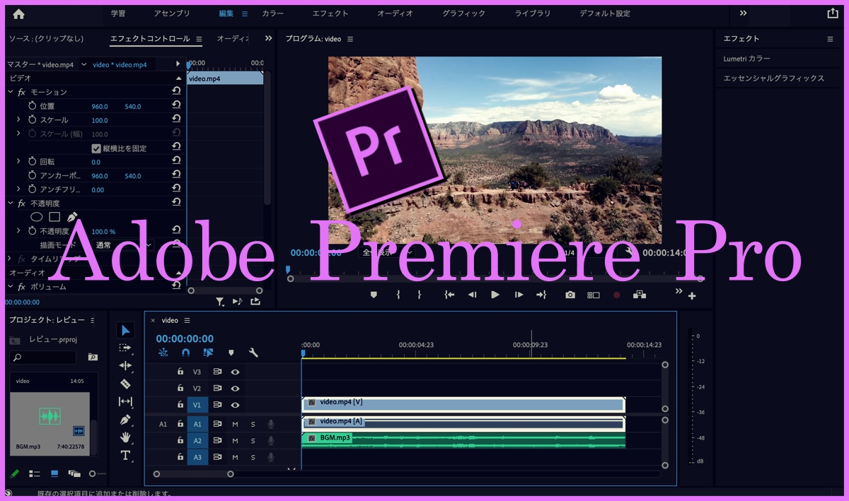 adobe premiere pro(サムネイル)