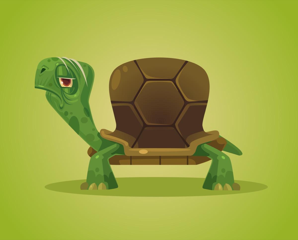 freepik-turtle